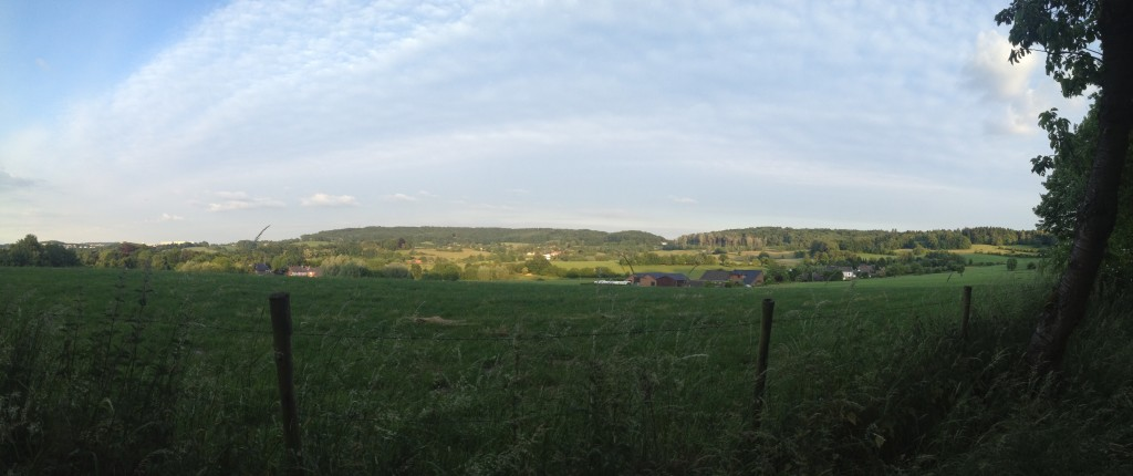 Panoramic view of the surroundings